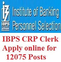 IBPS CRP Clerk