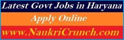 Sarkari Naukri in Haryana 2021   Govt Jobs in Haryana Online